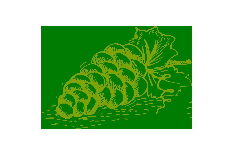 weinundgeist-neheim-trauben